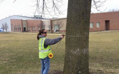 Arbor Day Foundation Update